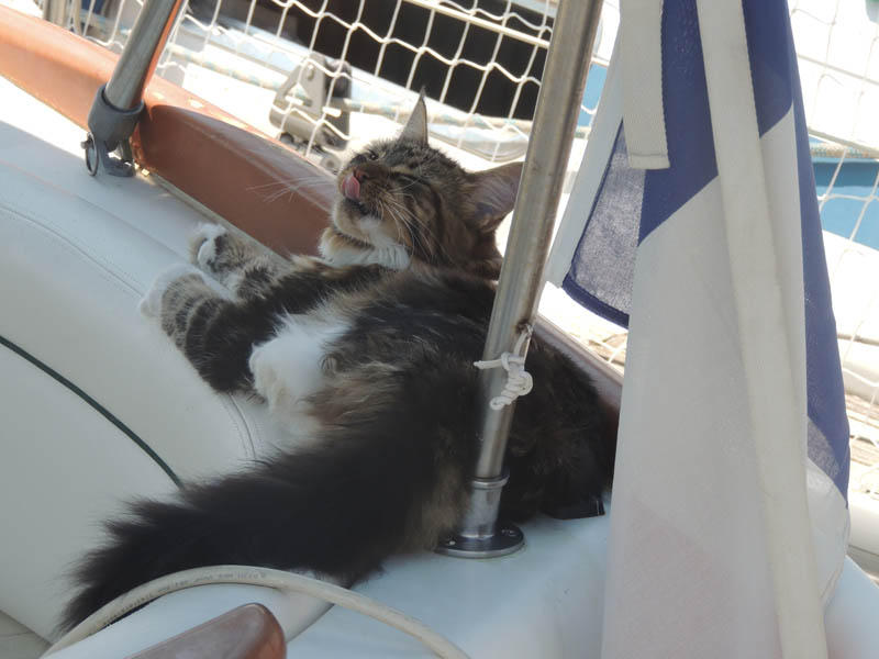 jessboat